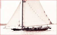 http://allenlieberman.com/files/gimgs/th-6_OLD-GAFF-RIGGED-SLOOP_v2.jpg