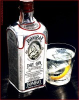 http://allenlieberman.com/files/gimgs/th-6_bombay-gin-on-wood_-web_v2.jpg