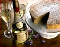 http://allenlieberman.com/files/gimgs/th-6_cheese-cake,-picolit-wine-w_v3.jpg
